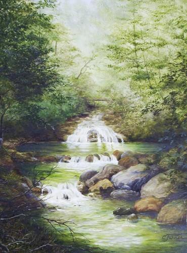 Umpqua Forest Creek